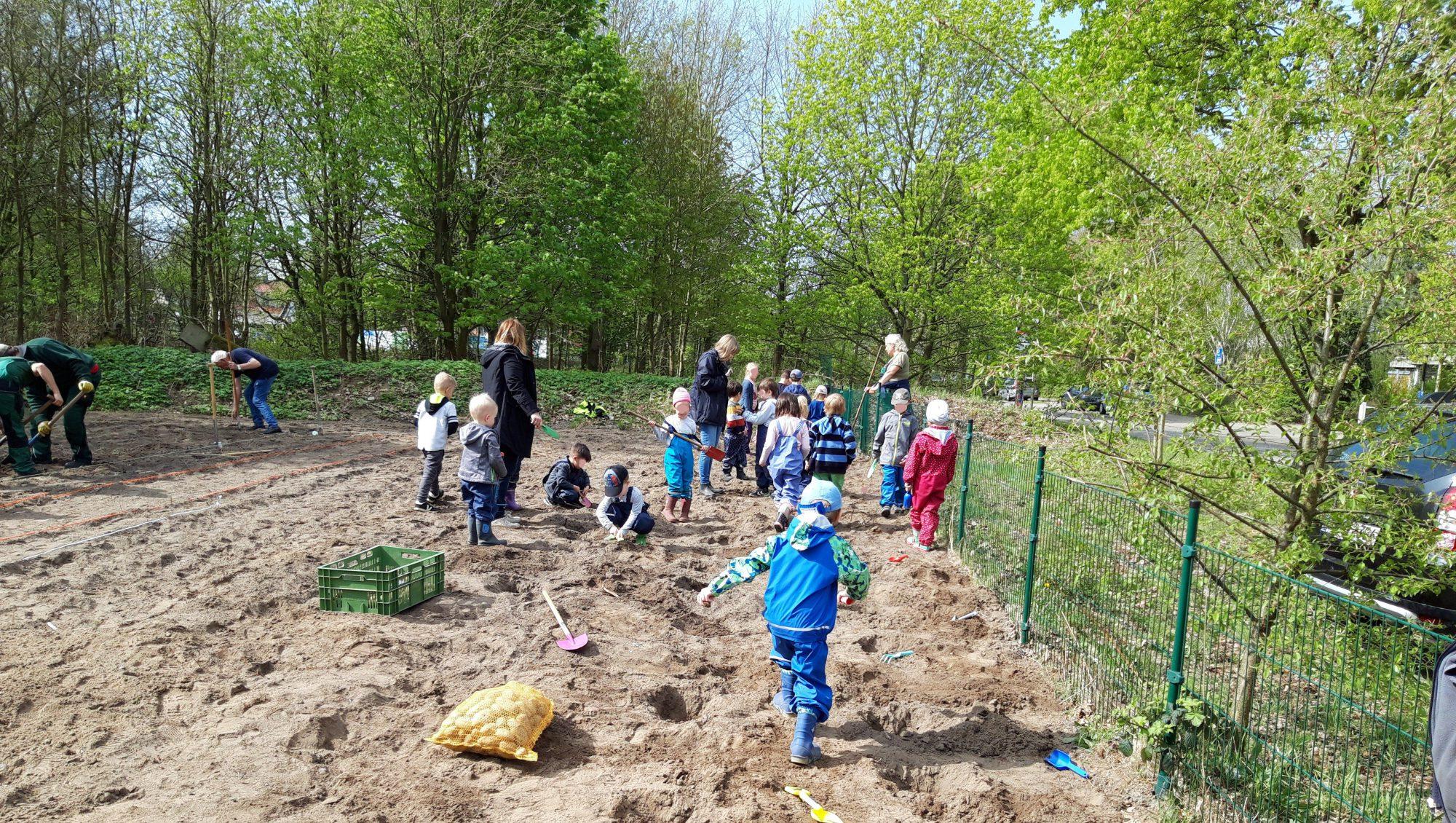 Gärtnern mit Kindern in Geesthacht